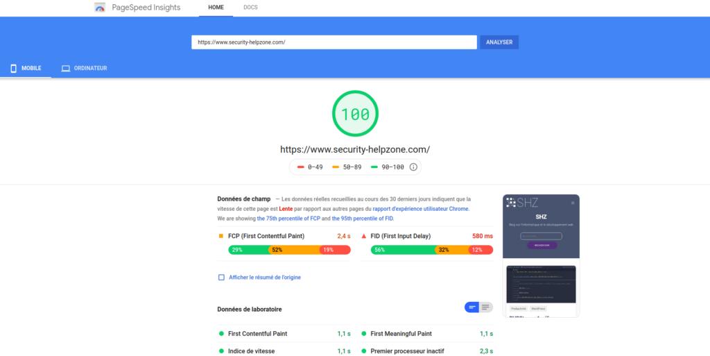Google Pagespeed 100/100